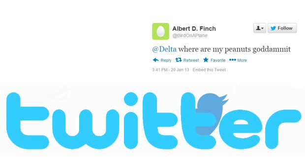 Twitter Logo Birdplane